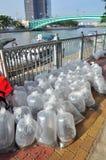 Des poissons sont maintenus dans des sachets en plastique préparant pour être libéré en rivière de Saigon pendant le jour nationa Image libre de droits