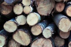 des rondins renversés de pin sont empilés sur l'un l'autre, dans les piles, la destruction de la forêt, abattage des arbres, fond photo libre de droits