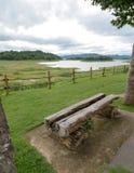 Des sièges sont faits avec le vieil arbre au bord du lac Images stock
