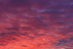 Des Sonnenuntergangs roter purpurroter Hintergrund des Himmels cloudly Stockfotos