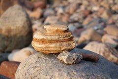 Des Steins Leben noch lizenzfreies stockfoto