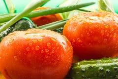 Des tomates rouges mûres, concombres verts, des plumes d'oignon vert sont couvertes de grandes gouttes de l'eau Image stock