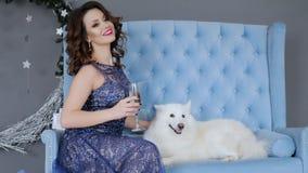 Des vacances, la femme chic dans la robe de soirée s'asseyent sur le sofa près du chien de Samoyed avec le verre à vin à disposit banque de vidéos