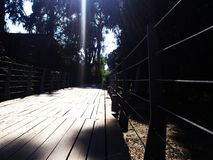 Des voies en acier sont construites avec la plate-forme en bois pour les personnes de marche et de recyclage Images stock