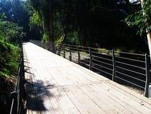 Des voies en acier sont construites avec la plate-forme en bois pour les personnes de marche et de recyclage Image libre de droits