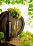 Des Weins Leben noch mit Weinstock lizenzfreie stockfotografie