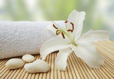 Des Wellness Lebenkiesel noch und weiße Lilie Stockbilder