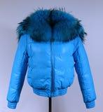 Des Winters Jacke unten lokalisiert auf grauem Hintergrund Blaue unten Jacke auf Attrappe ohne Gesicht oberbekleidung Stockbild