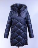 Des Winters Jacke unten lokalisiert auf grauem Hintergrund Dunkelgraue unten Jacke auf Attrappe ohne Gesicht oberbekleidung Lizenzfreie Stockfotografie