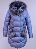 Des Winters Jacke unten lokalisiert auf grauem Hintergrund Graue unten Jacke mit Fuchs auf Attrappe ohne Gesicht oberbekleidung Lizenzfreies Stockbild