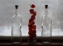 Des Winters Leben noch Gefrorenes Glas und Flaschen Phyllis-Blumen lizenzfreies stockbild