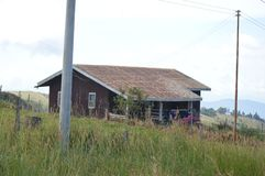 Desa mejerilantgård royaltyfri fotografi