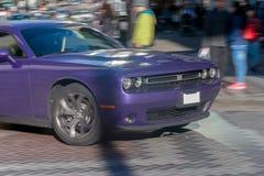 Desafiador púrpura en el movimiento fotografía de archivo