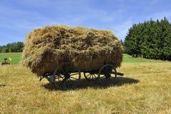 Desafio da colheita Foto de Stock Royalty Free