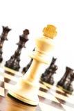 Desafio da xadrez Fotografia de Stock Royalty Free