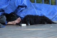 Desamparados durmientes y su perro sucio negro, Praga, Checo Republi Fotografía de archivo