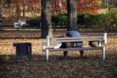 Desamparados en el parque Imagen de archivo