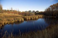 Desarrollo ecológico Imagen de archivo libre de regalías
