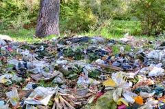 Desastre ambiental Fotografia de Stock