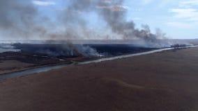 Desastre de la naturaleza, llamas grandes rápidas por el campo seco con el humo negro que sube al cielo cerca del río, visión des almacen de video