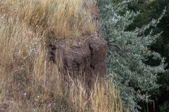 Desastre del derrumbamiento de la montaña en área sesmically peligrosa Grietas grandes en la tierra, pendiente de las capas grand imagen de archivo