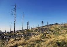 Desastre ecológico Foto de archivo libre de regalías