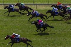 Desatención de Sprint de la carrera de caballos Imagen de archivo