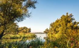 Desatención de un río de una reserva de naturaleza en colores del otoño Imagen de archivo libre de regalías