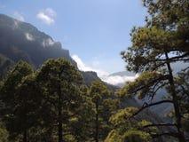 Desatención de una montaña enselvada Fotografía de archivo