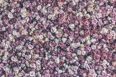 Desaturated розовая предпосылка стены Стоковое Изображение RF