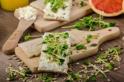 Desayuno sano, biscote curruscante con el queso cremoso orgánico Imagenes de archivo