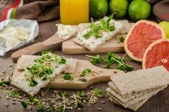 Desayuno sano, biscote curruscante con el queso cremoso orgánico Fotografía de archivo