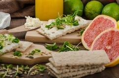 Desayuno sano, biscote curruscante con el queso cremoso orgánico Imágenes de archivo libres de regalías
