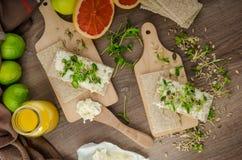 Desayuno sano, biscote curruscante con el queso cremoso orgánico Fotos de archivo libres de regalías