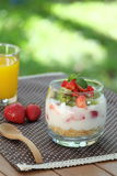 Desayuno sano y colorido en el jardín: Yogur con la fruta del granola, de la fresa y de kiwi Imagenes de archivo