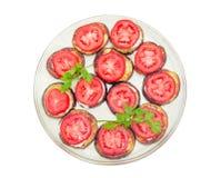 Desbastado por círculos fritou beringelas com molho de alho e tomatoe Fotos de Stock Royalty Free