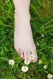 Descalzo en la hierba foto de archivo libre de regalías