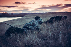 Descanse en campo rural en la puesta del sol después de cazar día Fotografía de archivo libre de regalías