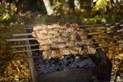 Descanse no piquenique da floresta do outono com carne, chá quente no fogo imagem de stock