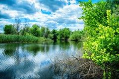 Descanse sobre la naturaleza en la orilla del río en el parque de naturaleza de Rusia Imagenes de archivo
