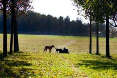 Descanso ao ar livre Foto de Stock