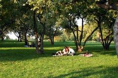 Descanso da família no parque Fotografia de Stock
