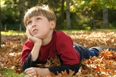 Descanso em Parklands Fotos de Stock