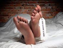 Descanso na paz imagem de stock royalty free