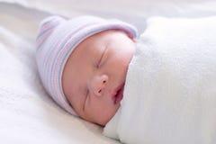 Descanso recém-nascido Imagem de Stock Royalty Free