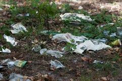 Descarga de basura en los problemas de maderas de la ecología imagen de archivo