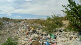 Descarga de basura ilegal enorme en los suburbios de la ciudad adentro almacen de metraje de vídeo