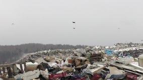 Descarga de lixo da cidade vídeos de arquivo