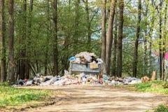 Descarga de lixo na floresta imagens de stock royalty free