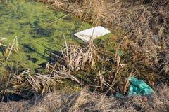 Descarga de lixo no lago ou água do rio perto do parque da natureza e do pântano poluir do conceito do desastre ecológico da flor imagem de stock royalty free